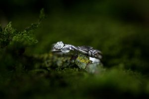 silver-stone-Woodland leaf ring