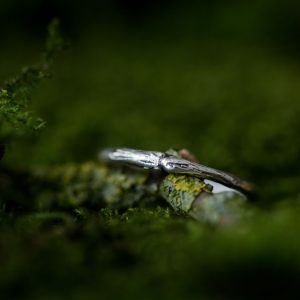 silver-stone-Woodland twig ring