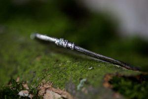 silver-stone-Woodland Bangle 1