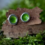 Woodland Pod Stud Earrings - Green by Helen Drye